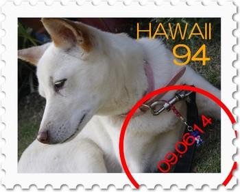 Stamp14195418_mg_4762